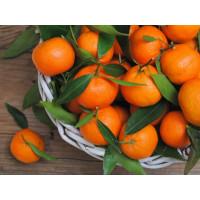 Свежие фрукты Organic